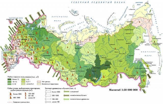 Рациональное использование лесных ресурсов
