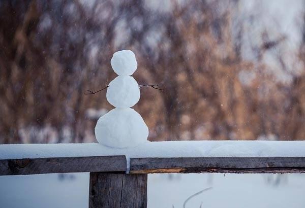 Сочинение про снеговика 3 класс