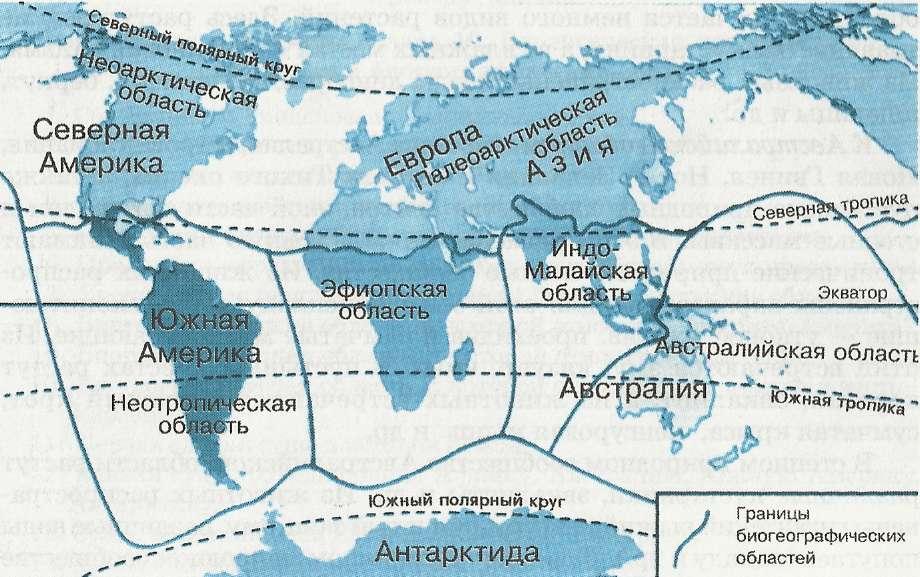 Биогеографические области земли