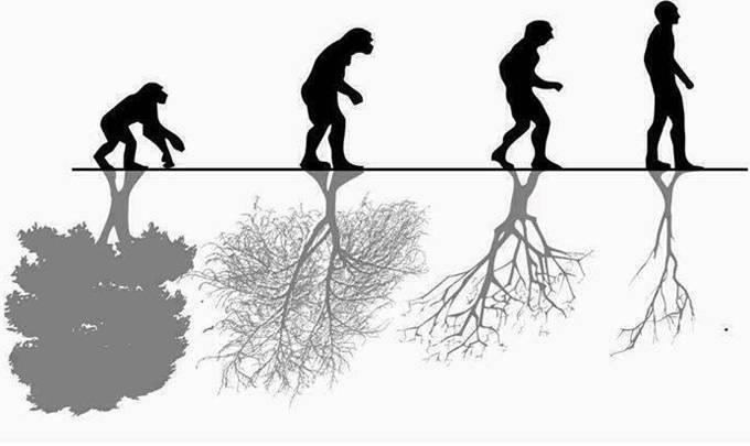 Как природа влияет на человека