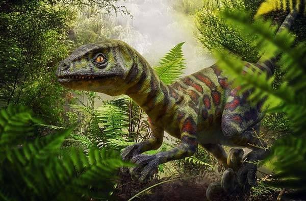 Сообщение о динозаврах 5 класс по биологии