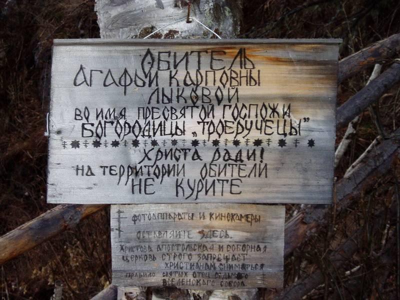 Животный мир тайги в россии