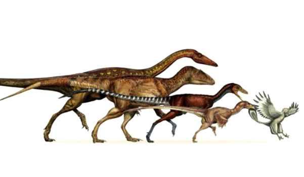 Динозавры виды и про них информация
