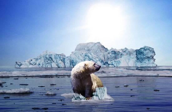 Сочинение на тему глобальное потепление