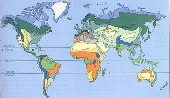 Экваториальный пояс государства примеры