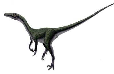 Мелкие динозавры
