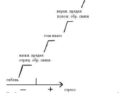 Гомеостатическое плато