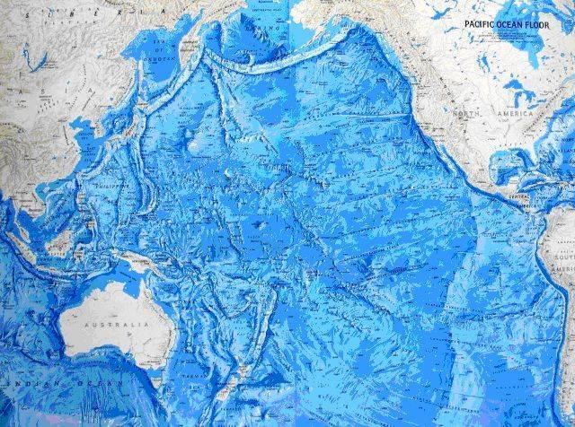 Рослинний і тваринний світ тихого океану