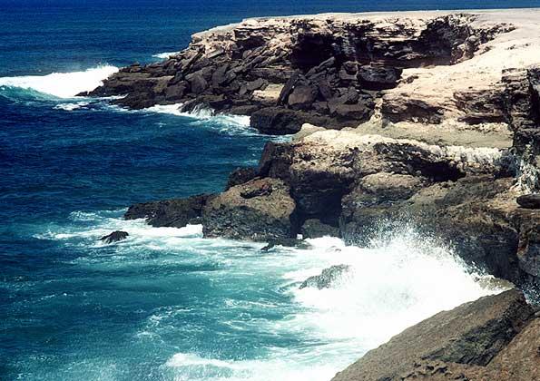 Какова площадь тихого океана