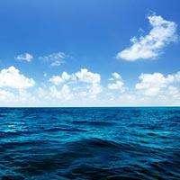 Какие моря омывают территорию россии с востока