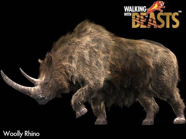 Череп носорога