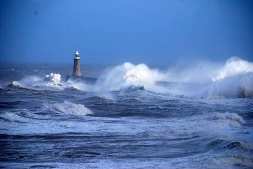 Свойства воды тихого океана кратко