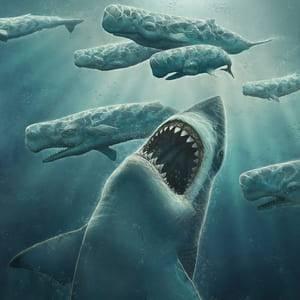Картинки акулы мегалодон