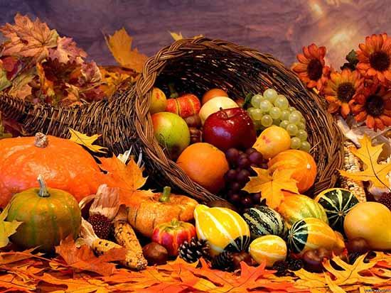 Сентябрь осень