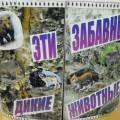 Животные средней полосы россии картинки