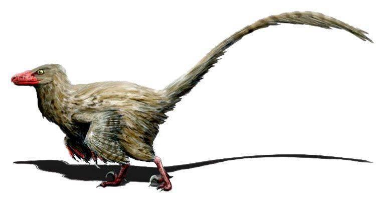 Популярные динозавры