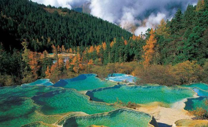 Водные биологические ресурсы