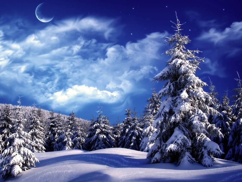 Описание зимнего вечера