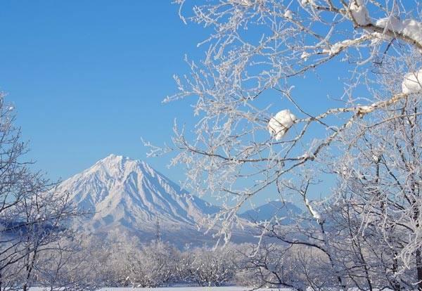 Зимнее утро Анализ стихотворения