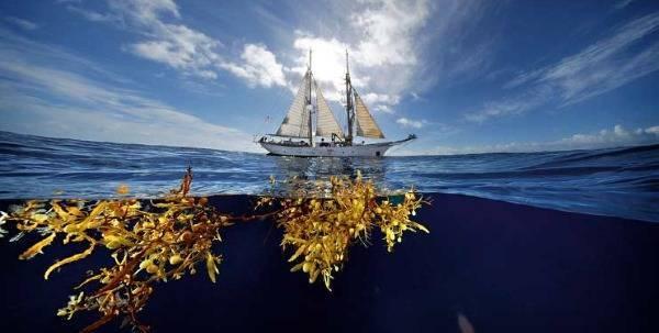 Самый большой океан на земле называется