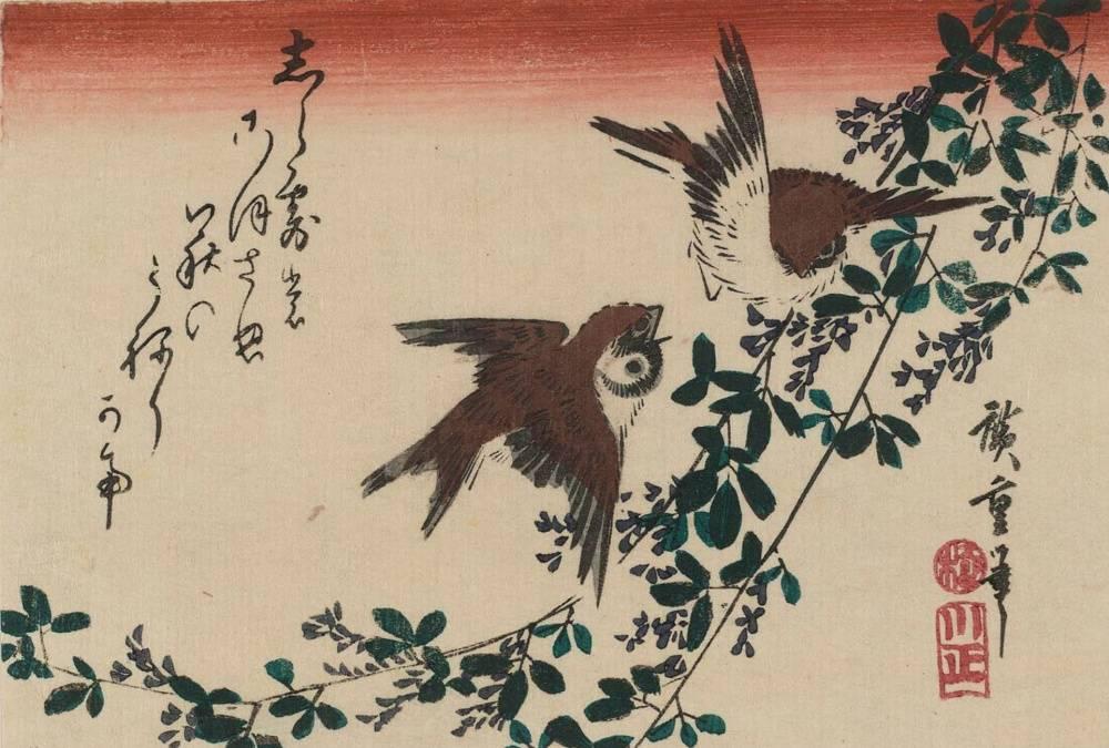 Цветы японии фото и названия
