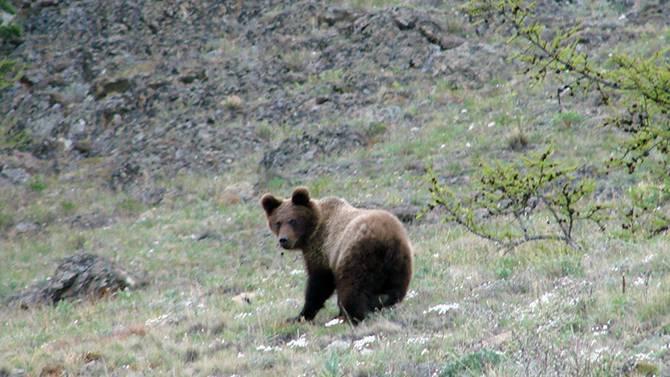 Природные парки россии список