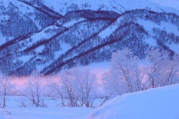 Сочинение про зимнее утро