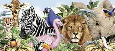 Количество видов животных на земле