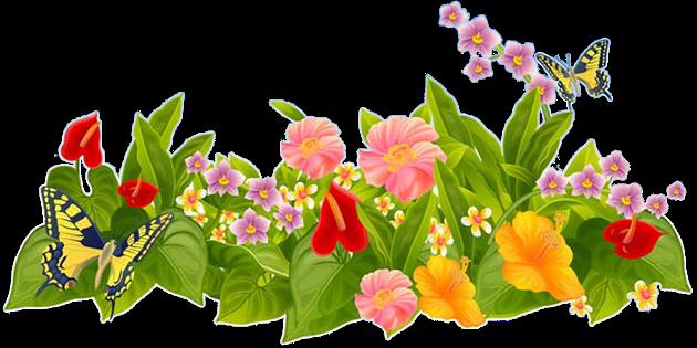 Описание летней природы