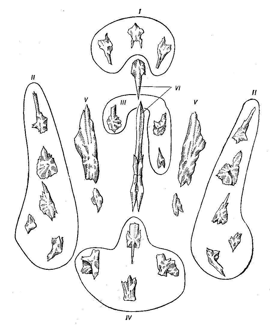 Кости рыбы