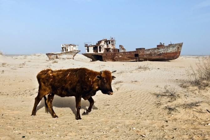 Почему исчезает аральское море