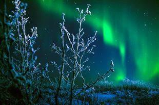 Климат арктики кратко