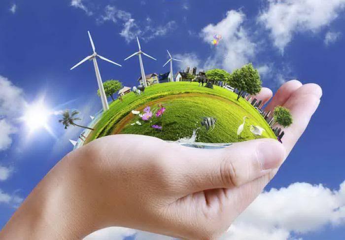 Возобновимые природные ресурсы примеры