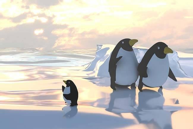 Краткая информация о пингвинах