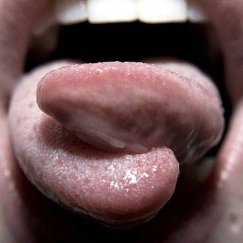 1353535949tongue-splitting04