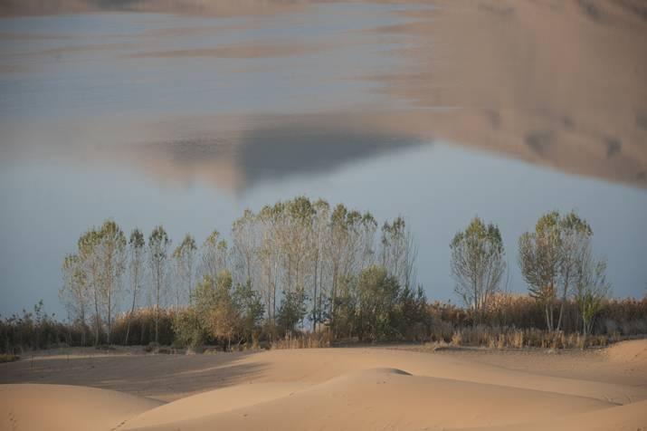 Пустыня алашань на карте