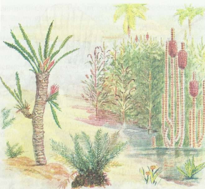 Палеозойская эра девон
