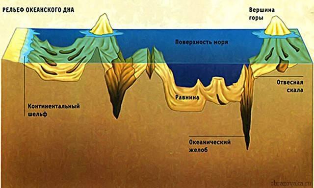 Площадь океанов по возрастанию