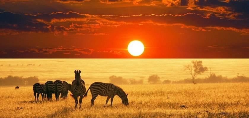 Климат саванны в африке