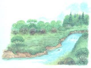 Сочинение на тему река