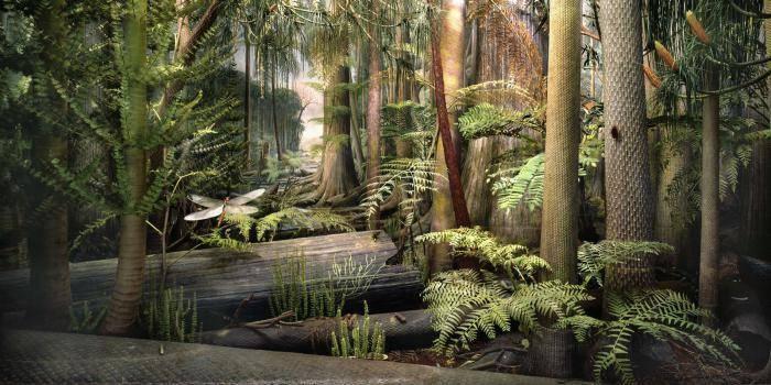 Палеогеновый период кайнозойской эры