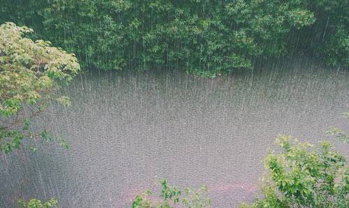 Сочинение на тему весенний дождь