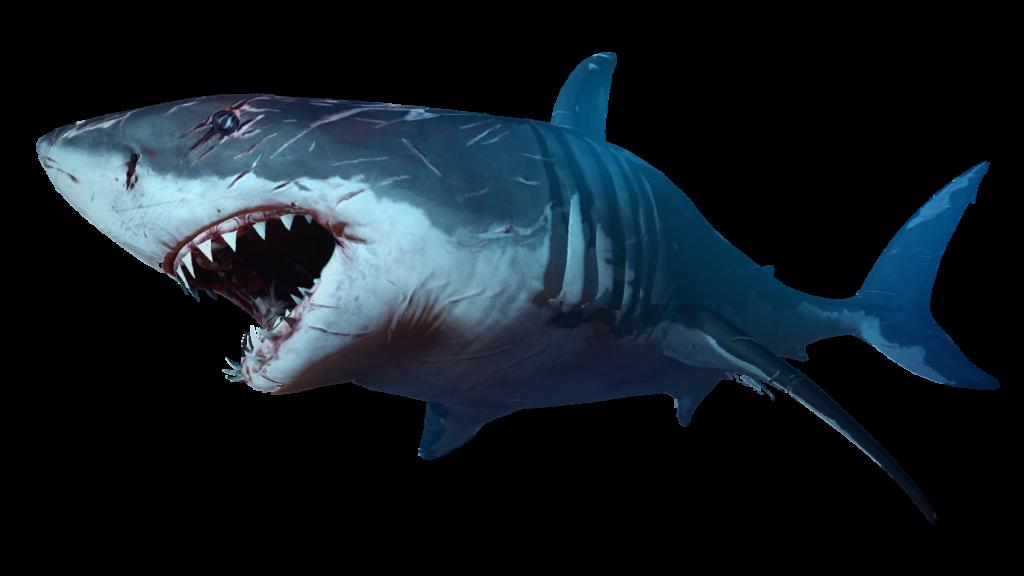 Морская белая рыба названия