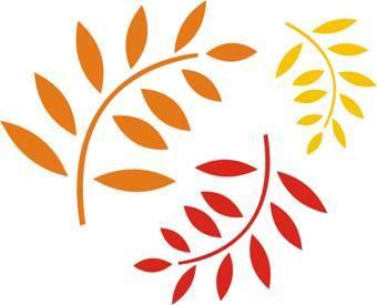 Цвет листьев рябины осенью