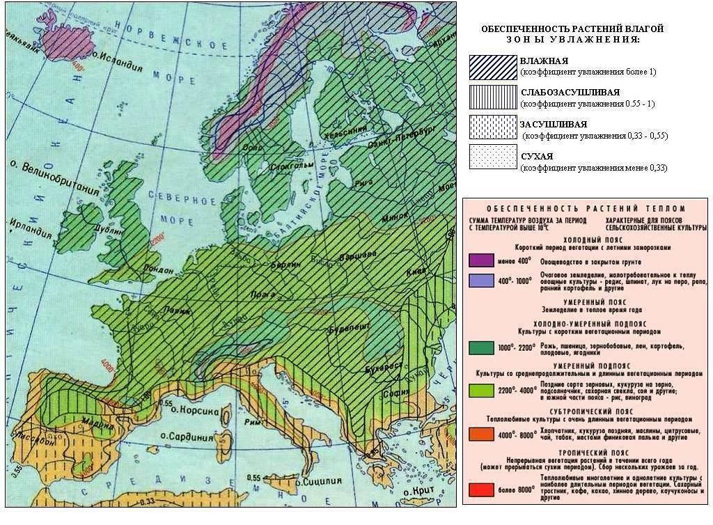 Лесные ресурсы европы