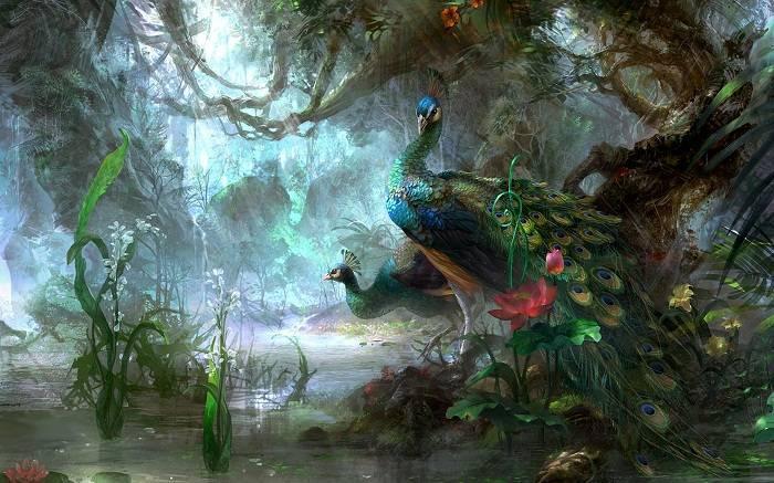 Влажные экваториальные леса растения и животные
