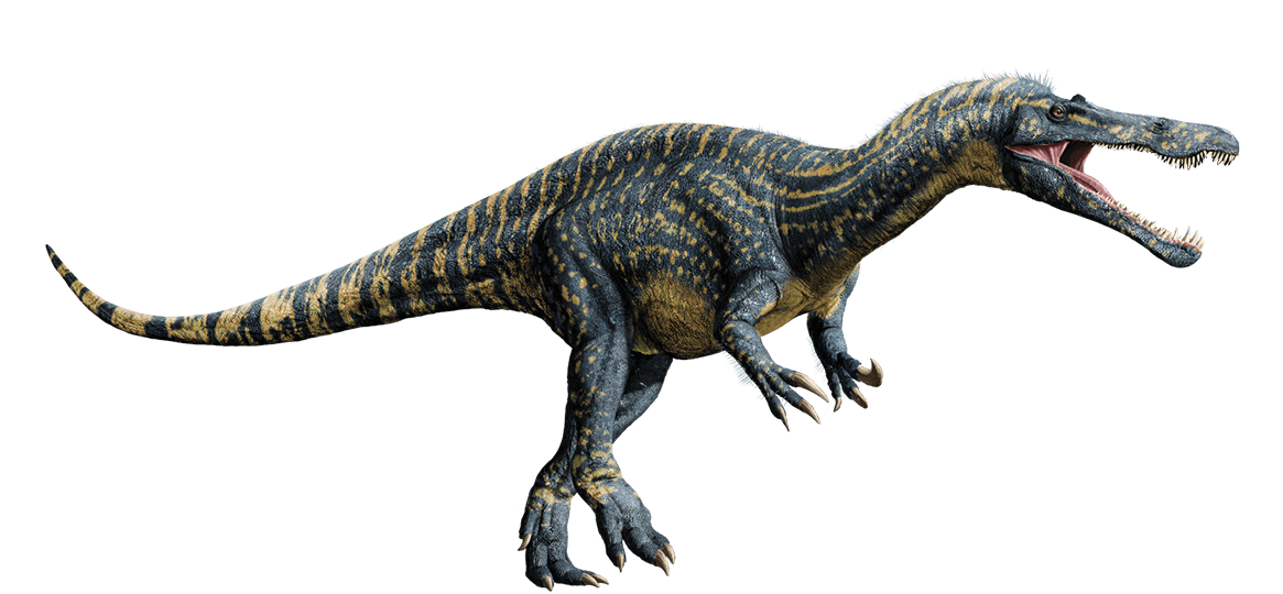 jurassic_world__suchomimus_by_sonichedgehog2-d8jnw6h
