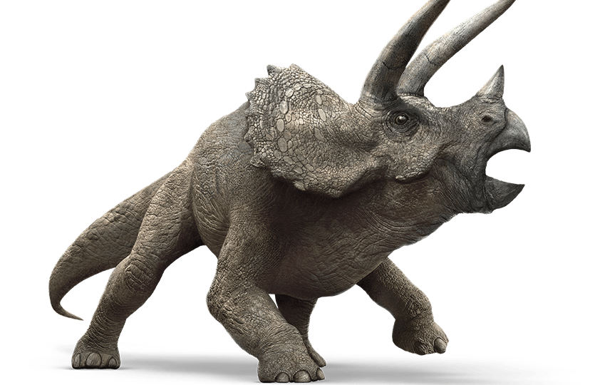 jurassic_world__triceratops_by_sonichedgehog2-d87wqdi