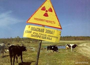 Экологические проблемы россии и пути их решения