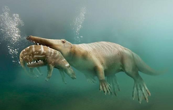 Доказана ли теория эволюции